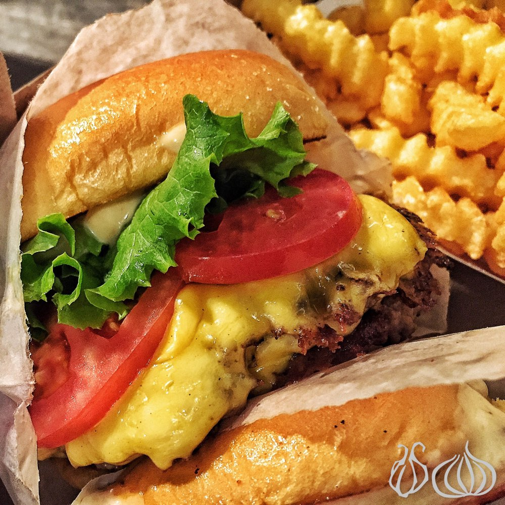shake-shack-new-york-madison-square292015-07-23-01-34-052015-11-15-06-38-20