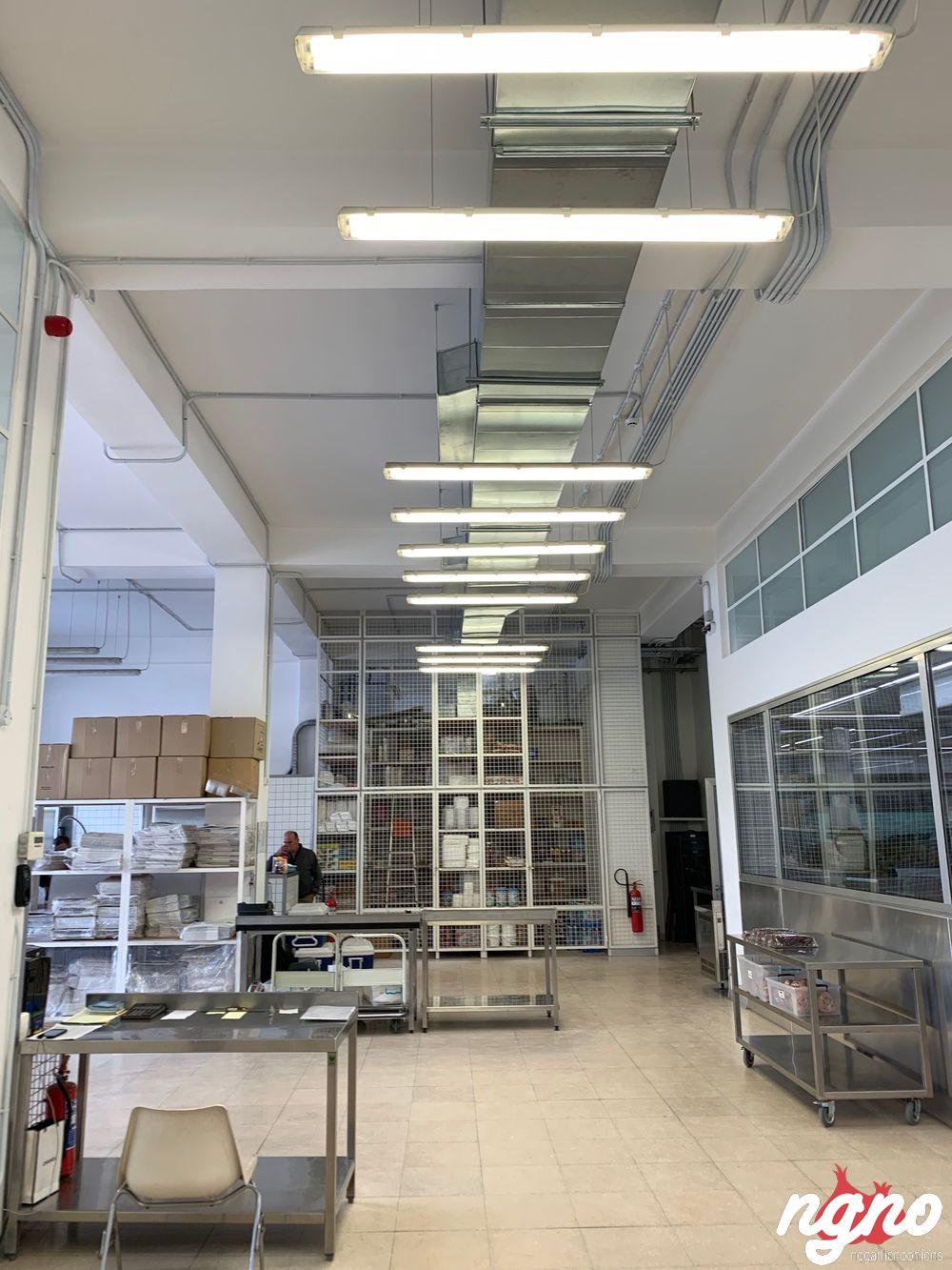 oslo-nogarlicnoonions-352019-03-13-04-31-24