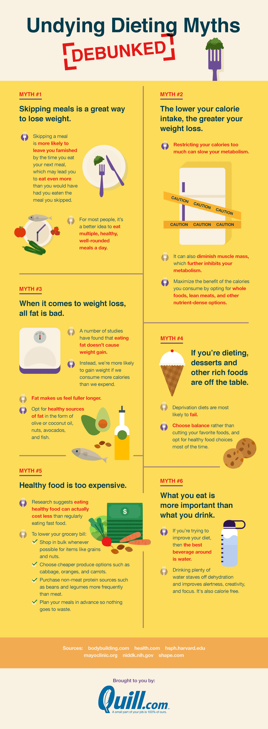 Undying-Dieting-Myths-Infographic-2a