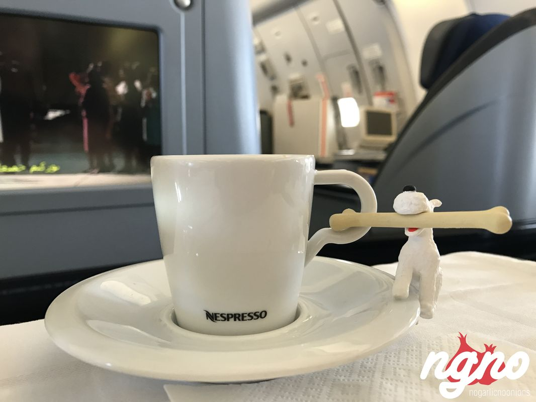 milou-airplane-review-mea-airline202017-06-05-10-26-09