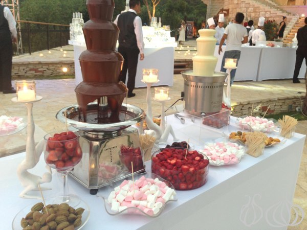Faqra_Catering_Wedding_Chateau_Rweiss015