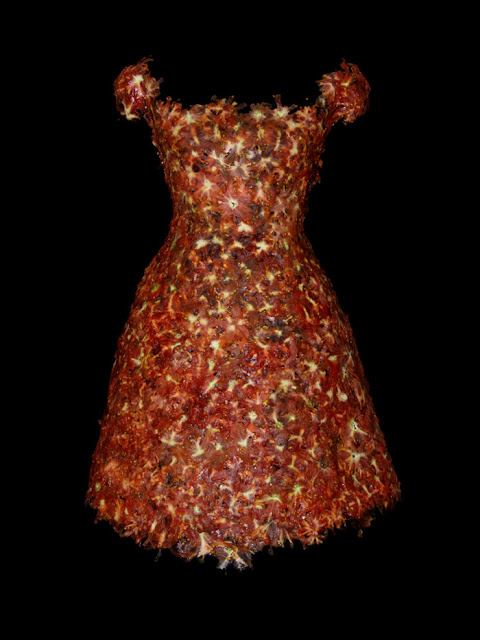 design-fetish-yeonju-sung-clothes-made-of-food-7