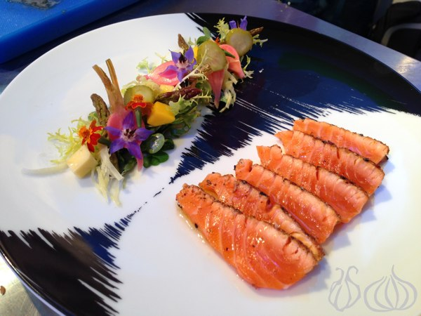 Grohe_Salmon_Plates02