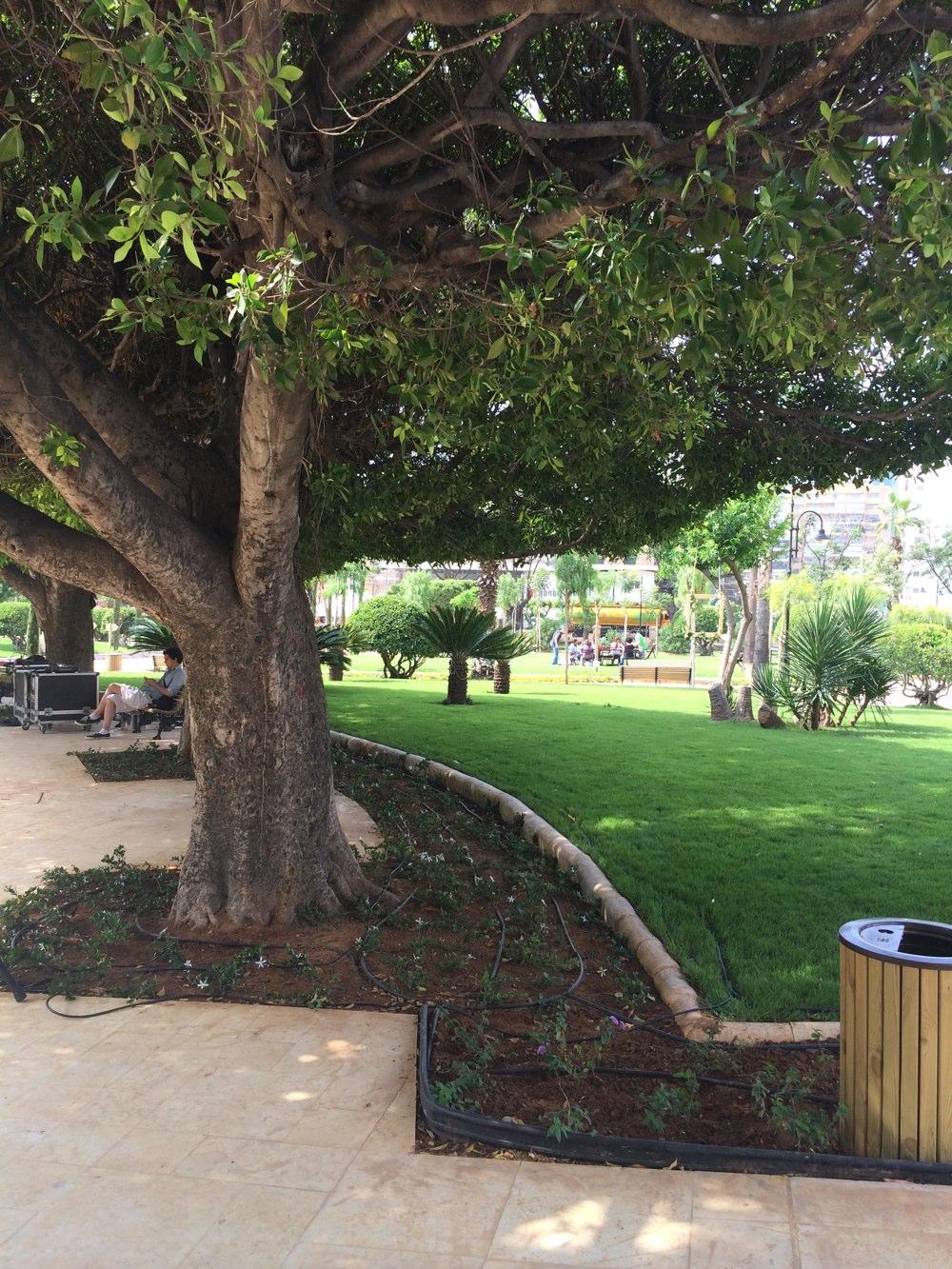 Sanayeh Garden Enjoy A Green Haven In Beirut Nogarlicnoonions Restaurant Food And Travel